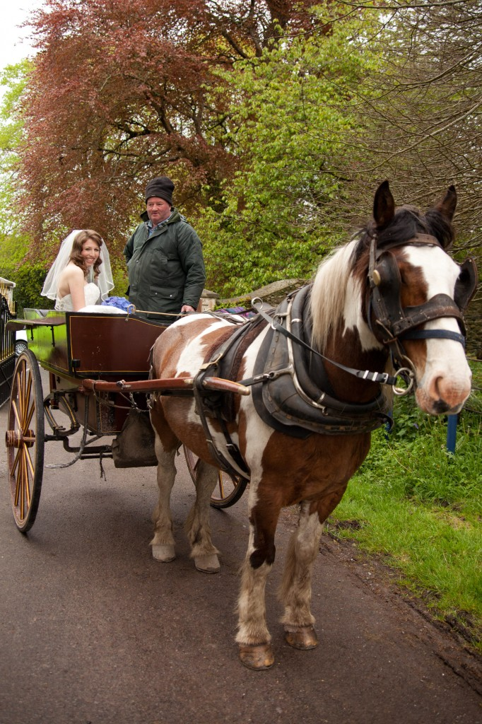 an Intimate Weddings with a horse and cart