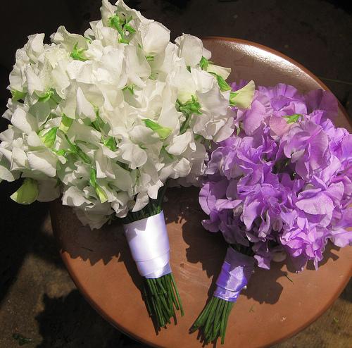 sweet pea wedding bouquet Sweet peas to be precise