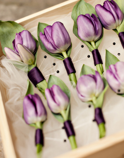 purple tulip boutonnieres Tulip Wedding Flowers