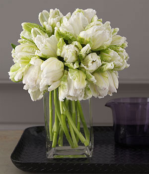 parrot tulip floral arrangement Tulip Wedding Flowers
