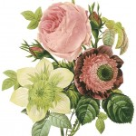 Vintage Botanicals pink and green foliage
