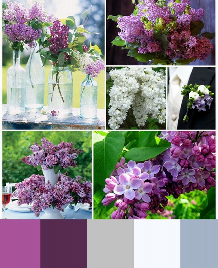 liliac purple and blue wedding colors