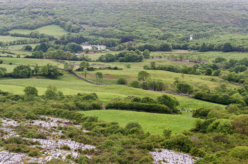 Destination wedding in the burren